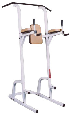Quality Fitness by Maximus MX-378 Chin-Up Knee Raise and Dip Station