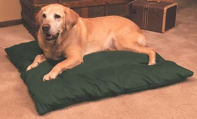 k and h manufacturing thermo dog bed large size 0 0 All About The Border Collie